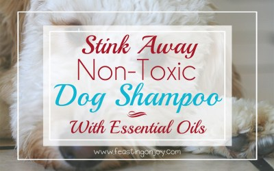Stink Away: DIY Non-Toxic Dog Shampoo With Essential Oils