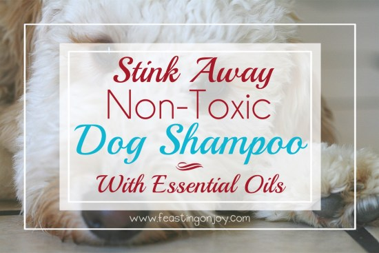 Stink Away Non-Toxic Dog Shampoo with Essential Oils 1 | Feasting On Joy