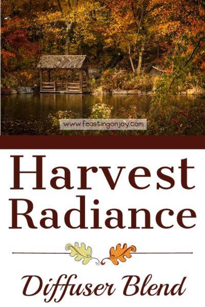 Harvest Radiance Diffuser Blend | Feasting On Joy