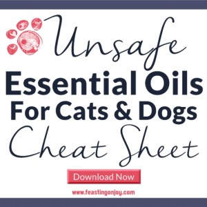 Unsafe Essential Oils for Cats and Dogs | Feasting On Joy