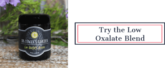 Try the Low Oxalate Whole Food Blend | Feasting On Joy