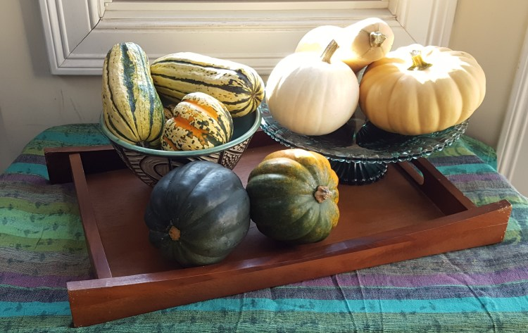 Acorn, Delicata, Butternut and Pumpkin, Oh My! | Feast In Thyme