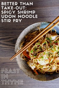 Ready in 30 minutes, this quick and easy recipe for Spicy Shrimp Udon Noodle Stir Fry is a crave-worthy addition to your dinner table. Full of fresh vegetables, luscious noodles, and oven roasted shrimp, it's sure to be better than any last-minute take-out order (Low FODMAP Options) | FeastInThyme.com