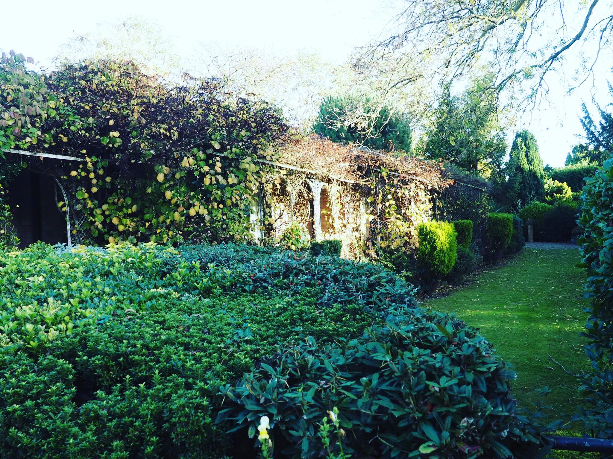Mount-Royale-York-Gardens