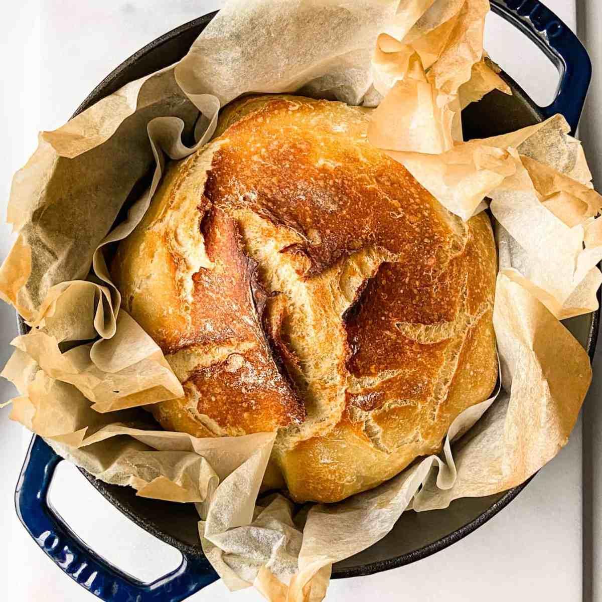 no-knead-bread-recipe