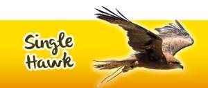 Hawk Experience