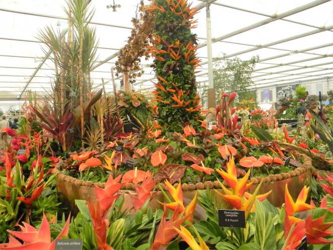 Tropical plants on display, 2018 Chelsea Flower Show --Why The Chelsea Flower Show Should Be On Your Bucket List