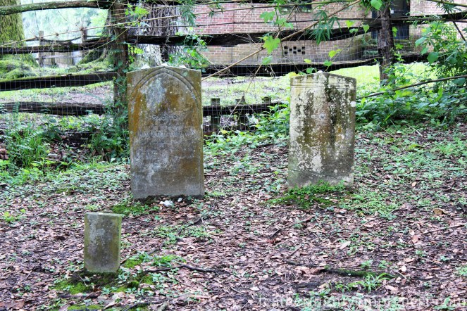 Enslaved people's cemetery --Exploring The Enchanting Gardens Of Middleton Place