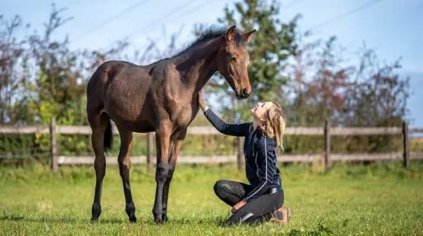 9. Foal Handling