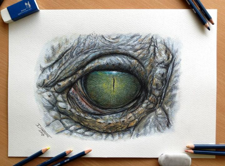 And the window to our soul is made up of the iris (which is the colored portion),. Dino Tomic – Eye Color Pencil Drawing Study   Feather Of Me