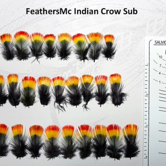 Substitute Feathers