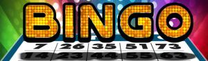 Bar Bingo @ Features Sports Bar & Grill
