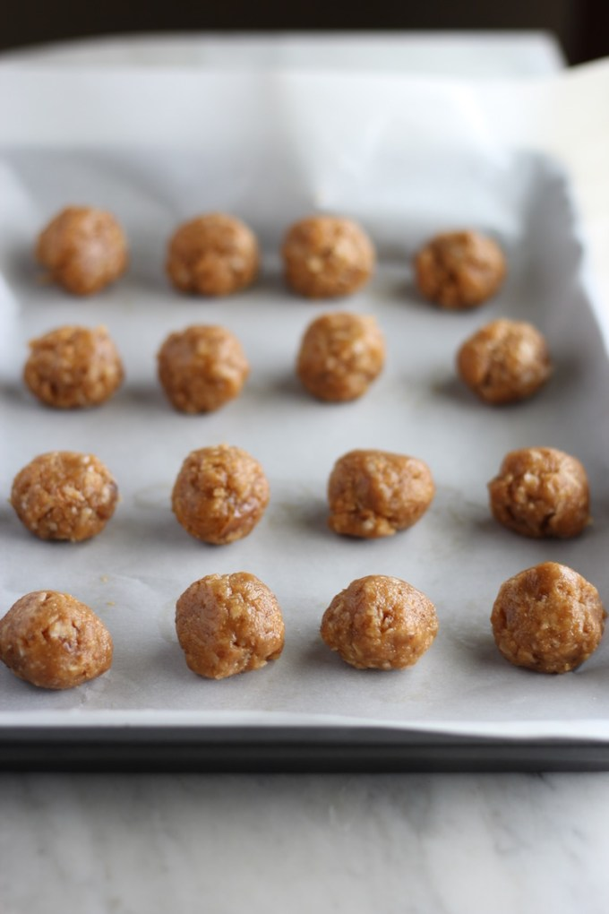 Salted Cashew Coconut Truffles - paleo, vegan, gluten-free bites that are fruit-sweetened and made in minutes! | fedandfulfilled.com