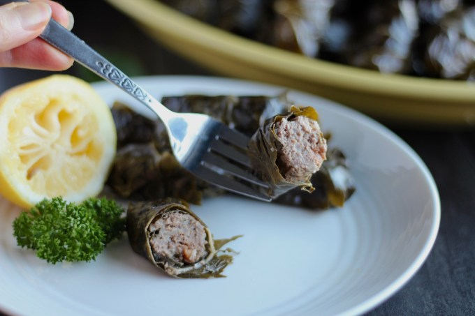 Instant Pot Paleo Stuffed Grape Leaves (AIP) - these Paleo grape leaves are packed full of grassfed beef, golden raisins, cauliflower rice, and Middle Eastern spices! SO good! | fedandfulfilled.com