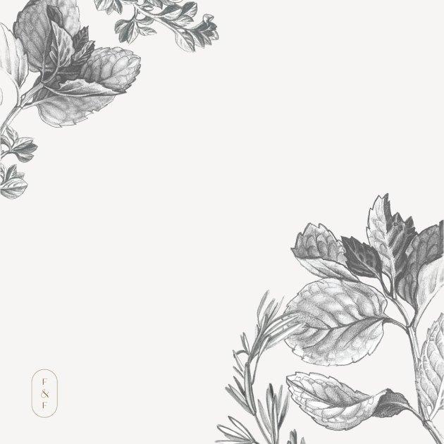 Fed-&-Full-herb-illustrations
