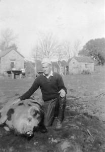 Pig as a Pet