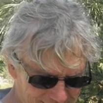 Illustration du profil de Dominique Clergue