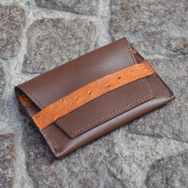 Brown & Ostrich Umbria Card Case, Front