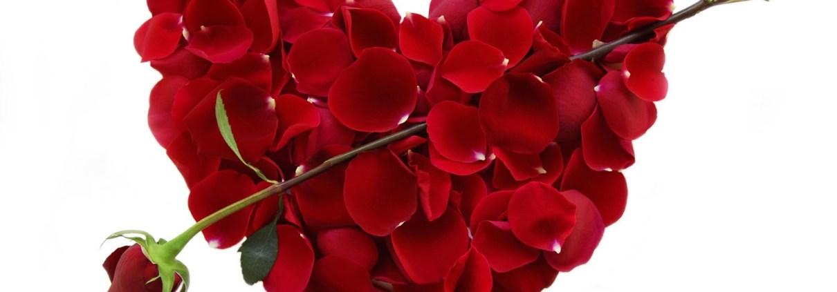 Federico Salon Valentines day