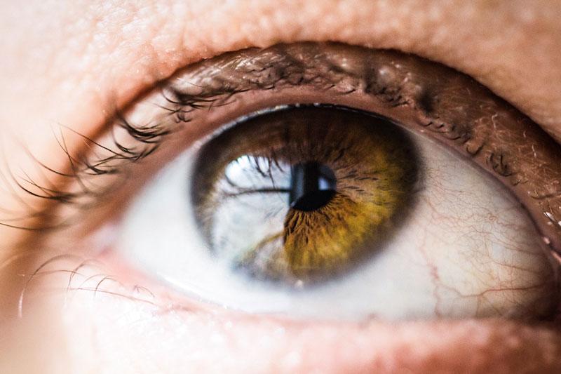 movimiento ojo federopticos lukus