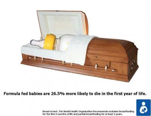 formula-coffin-500x385