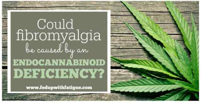 Some emerging research indicates fibromyalgia, migraine and irritable bowel syndrome may be tied to a deficiency in the body's endocannabinoid system. This could explain why cannabis benefits so many fibromyalgia sufferers.