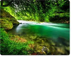 Philippine environment