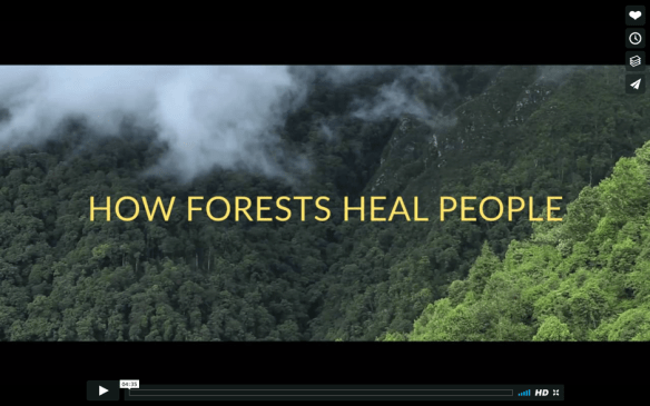 Forests Heal.png