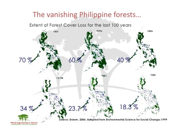 Vanishing Philippine Forests.jpg