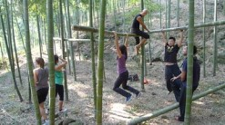 forest fitness2