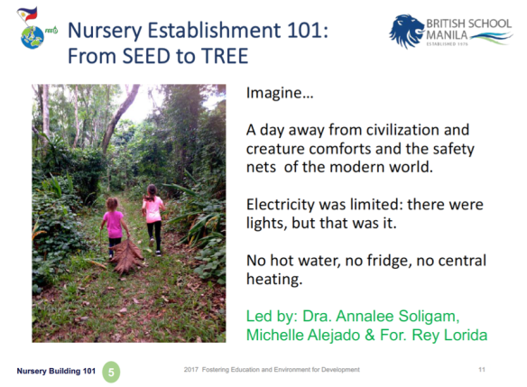 SEED to TREE 101