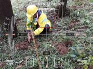 Hi-Las-Marketin-Corp-CSR-geo-tree-tags-FEED20183