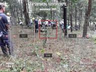 Hi-Las-Marketin-Corp-CSR-geo-tree-tags-FEED20185