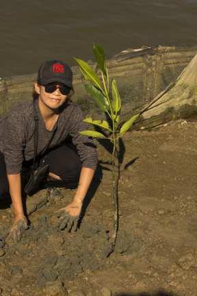 planting individual 3