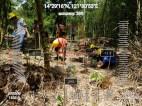 MITIS-Planting-FEED-13041924