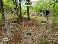 HawakKamay-TIDES-APECSchools-GPS-2704193