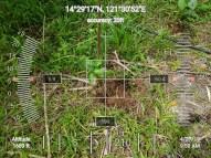 HawakKamay-TIDES-APECSchools-GPS-2704195