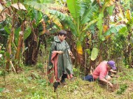 EcoMatcher-FEED-OurBetterWorld-1000Trees43