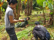 EcoMatcher-FEED-OurBetterWorld-1000Trees44