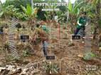FEED=Odfjell-CSR-Tree-Planting2-31Aug2019-GPS10