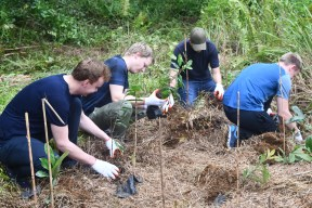 OiP Treeplanting Norwegian seafarers