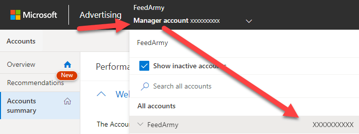 Microsoft Ads Account ID