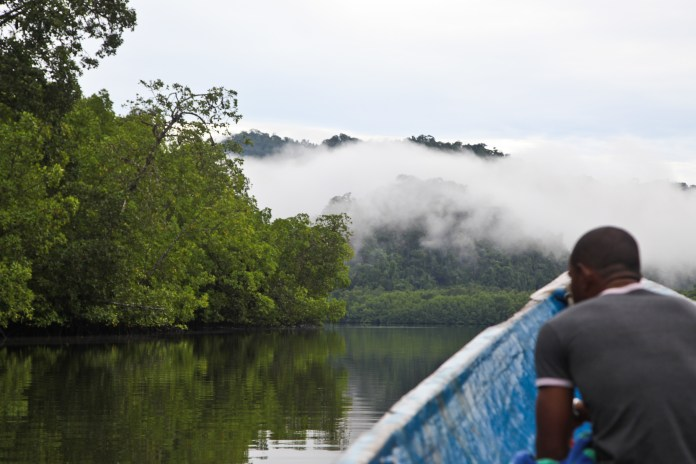 New UN Report Shows Indigenous People Play Vital Role in Protection of Forests