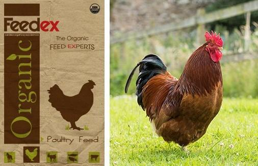 Organic Poultry Feed - Feedex Organic Livestock Feed