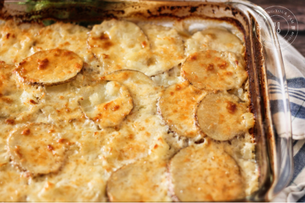 Image of golden brown scalloped potatoes