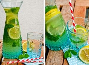 Minz-Zitronen-Limonade Rezept