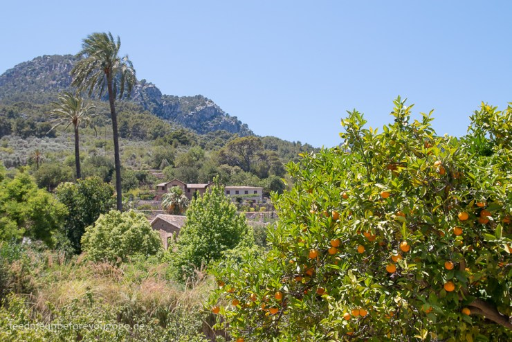 mallorca-food-travel-guide-soller-port-de-soller-feed-me-up-before-you-go-go-11