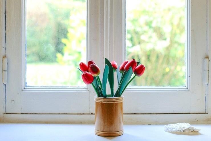 Tulpen vor Fenster