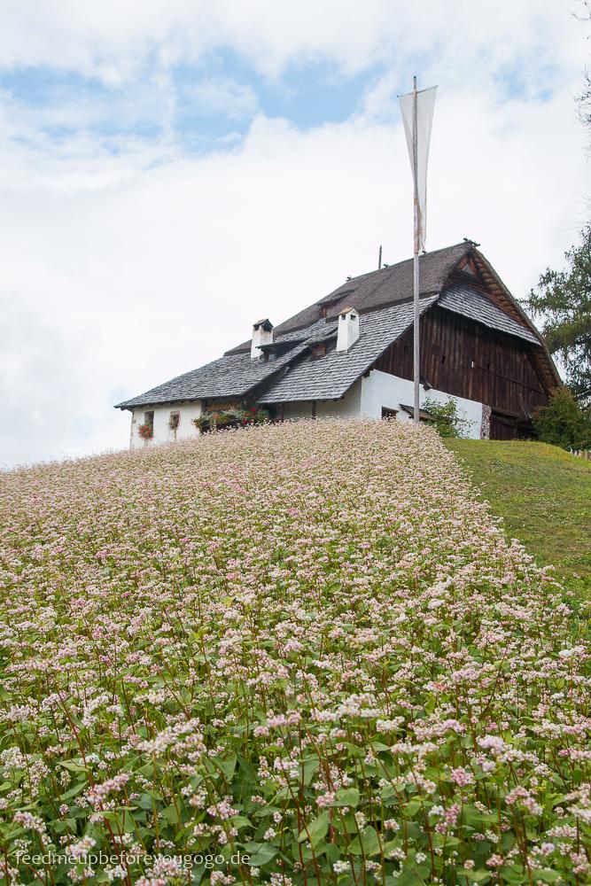 Plattner Bienenhof Ritten Südtirol Italien