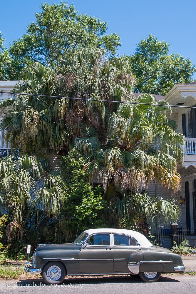 3 Tage in New Orleans Garden District Oldtimer vor Palme